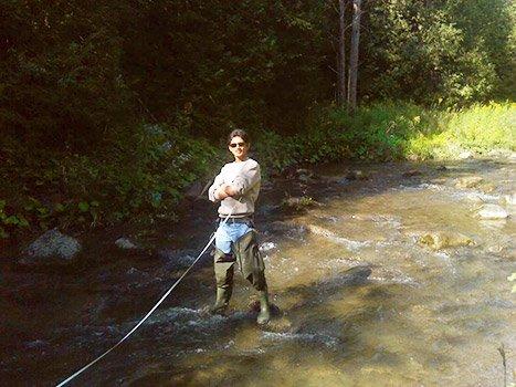 trevor-in-stream
