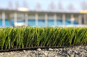 grass.turf