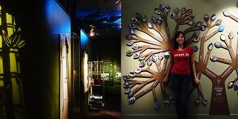 otago-museum