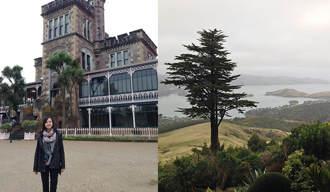 larnach-castle-new-zealand