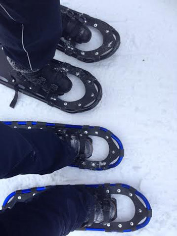 snow-shoes