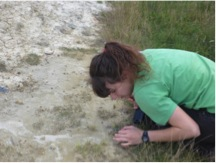 environmental-geology-project-rocks