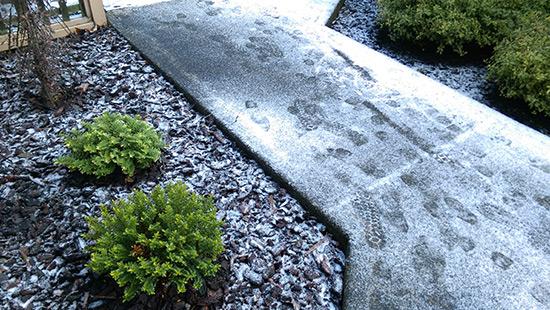 snowy-footprints-otago