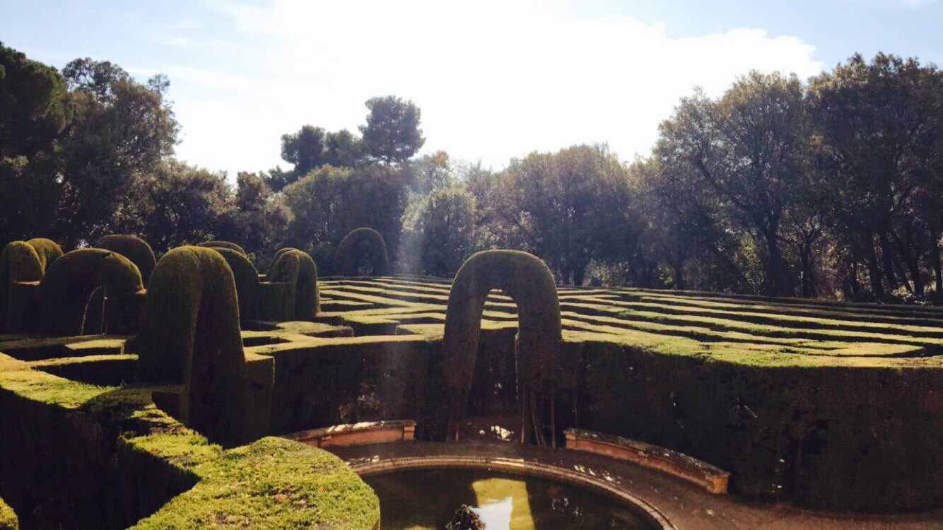 The Maze in the Labyrinth Park december blog